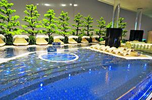 會所設有長約25米的室外泳池,住客夏天可以暢泳一番。(會所模型)