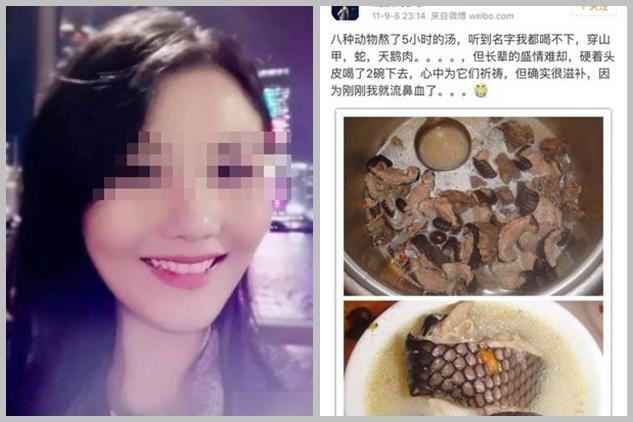 深圳一名妙齡女子近日被網民翻舊帳,發現她多年來不止一次違法吃穿山甲,且吃法刁鑽、包括穿山甲血炒飯,甚至吃至流鼻血。