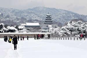 今年復活節遊日、韓、台,團費減幅達7至18%,當中以韓國團減幅最高。圖為首爾景福宮。(新華社資料圖片)