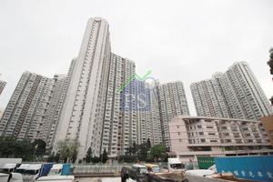 藍田德田邨迷你戶於自由市場以248萬元售,面積165平方呎,呎價1.5萬元,較同區私樓更貴。