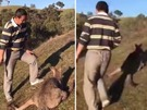 友人替男子拍下虐殺袋鼠的過程。
