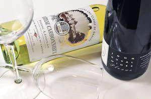 紅酒:John Duval, Plexus, SGM, Barossa, Australia, 2013($325,右)、白酒:Chateau Carbonnieux, Pessac-Leognan, Bordeaux, France, 2010($415,左)(陳偉能攝)