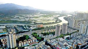 粵港澳大灣區集中珠三角地區,而香港與珠三角一帶的城市文化較為接近,因此香港的初創者在大灣區創業,遇到「水土不服」的機會較細。(中通社資料圖片)
