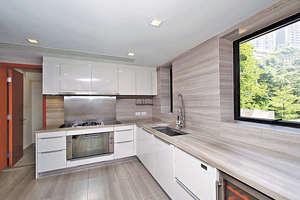 廚房具規模,蒸、焗爐屬原裝。(黃建輝攝)