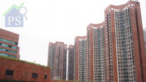 樓東俊安前行政總裁柳宇過去頗活躍於沙田市中心一帶細價樓市場,包括沙田中心、新城市廣場(圖)等。