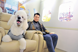 Life Travel寵物旅行社開拓寵物旅遊藍海,業務發展總監鍾永健表示,曾試過一夜間在fb收到2千個查詢。(陳國峰攝)