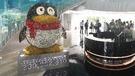 企鵝最愛聽音樂!騰訊渾身是寶!(第二版)