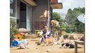 日本片《貓咪收集之家》 萌爆喵星人帶你走出困局