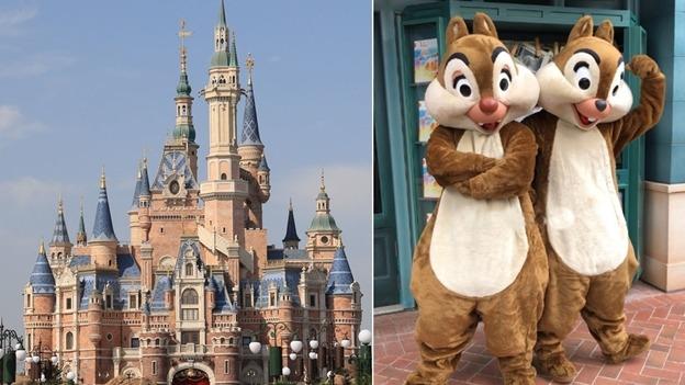 大鼻正式名稱是蒂蒂(Dale),為迪士尼熱門卡通人物,與俗稱鋼牙的奇奇(Chip),是一對花栗鼠雙胞胎兄弟。