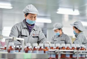 1月中國官方製造業PMI數據將於明天公布,機構普遍預測數據將繼續放緩,顯示經濟仍在下行。圖為河北省定州市一間製藥廠。(新華社資料圖片)