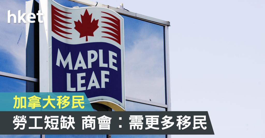 加拿大有商会认为,政府应接收更多移民。